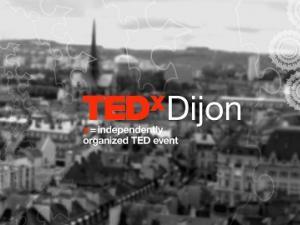 TEDxDijon 2014 : l'Homme hacker des systèmes